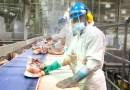 food workers safety