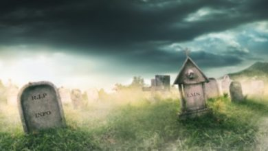 Photo of The LMS: Where Information Goes to Die