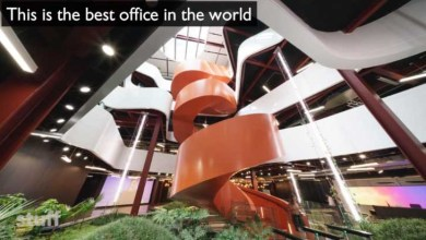 Photo of Colourful B:Hive office in Auckland voted best in world