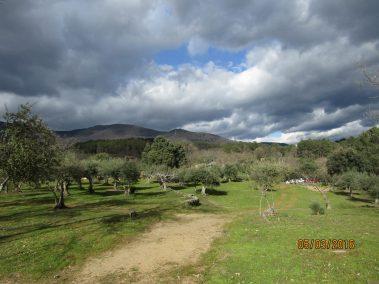 Este verano, aprende inglés en Sierra de Gredos