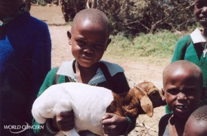 Be a humanitarian this Christmas - give a goat!