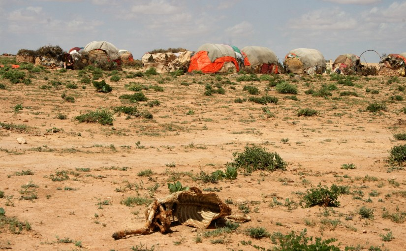 Why Children in Somalia Have No Food