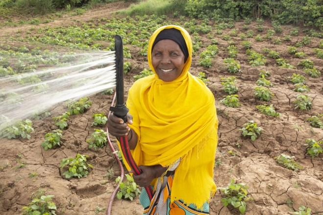 a woman waters her farm in rural Kenya