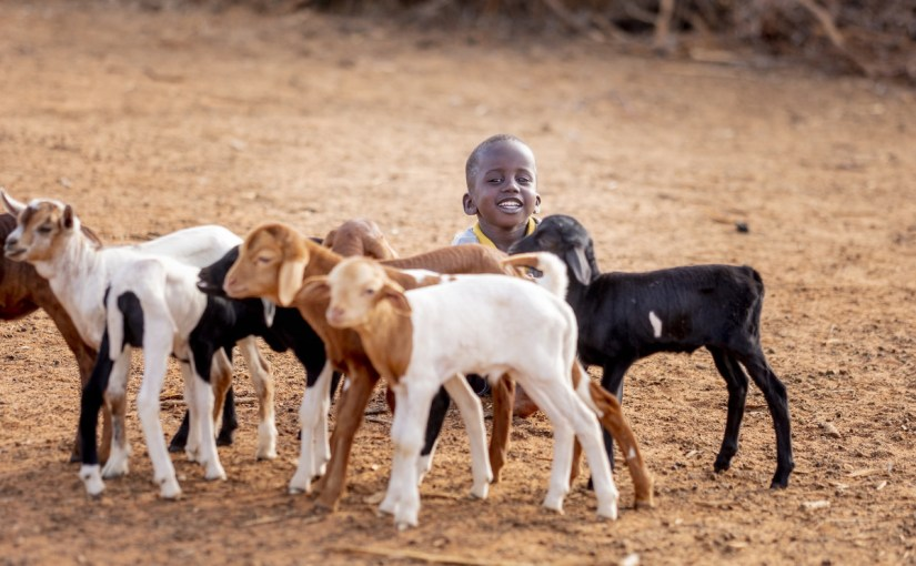 When You Give a Kid a Goat