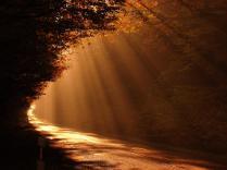 Luminesnce
