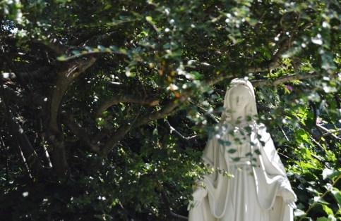 Mary Hidden