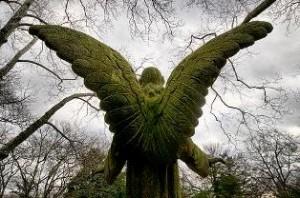 Human-Angel_Humanity-Healing