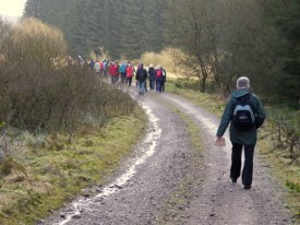 sedentary behaviour and physical activity walking