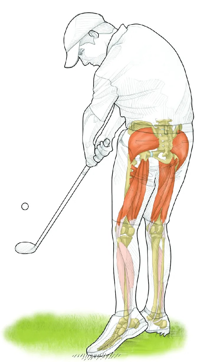 Strength exercises for golf to improve balance