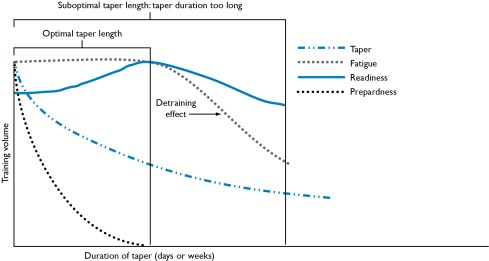 How to taper - Tapering graph by Bompa