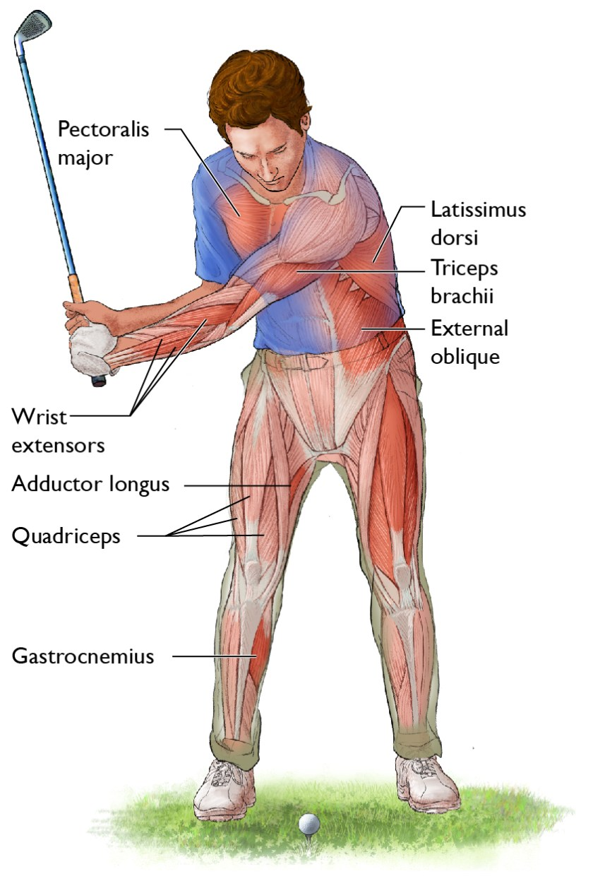 Functional strength exercises for golf