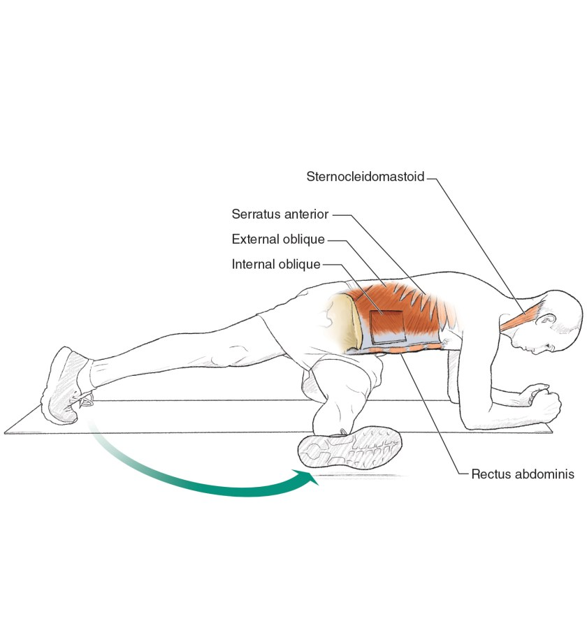 Core exercises for cyclists - Step-through Plank