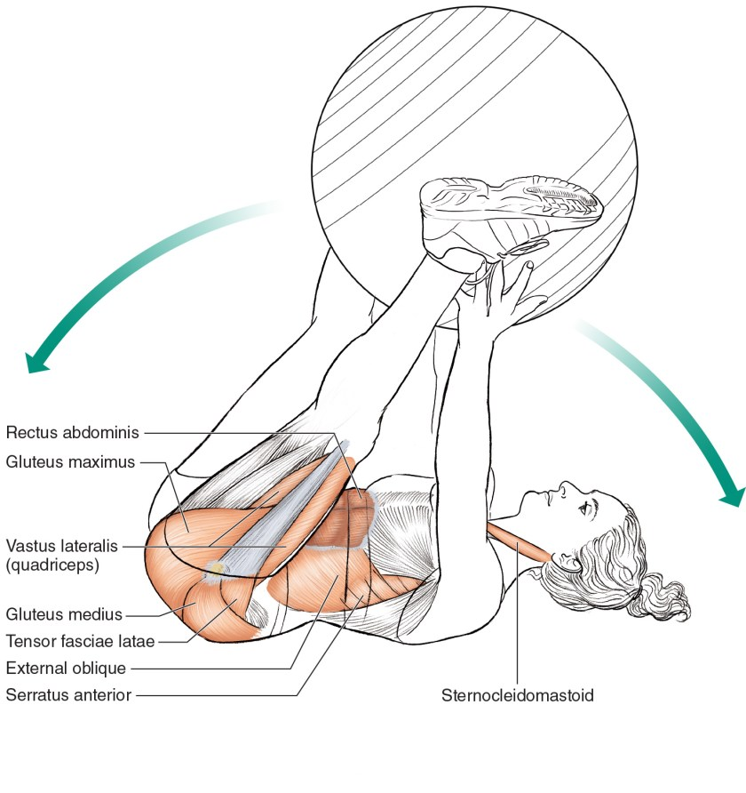 Core exercises for cyclists - Stability Ball Pass
