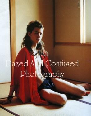 art245 copy