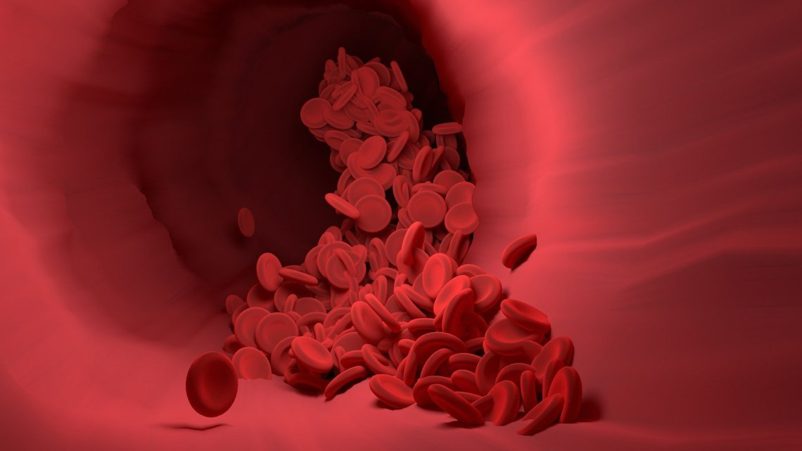 red blood cells in vein