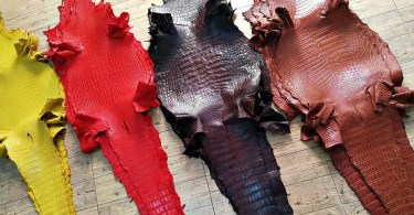 various crocodile skins dyed different colours