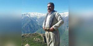 جمال اسدی