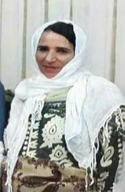 مینا شیخی