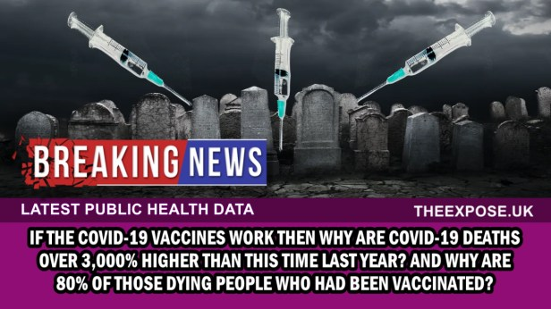 covid 19 deaths 3,000% higher than this time last year and 80% of the dead had the vaccine