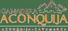 Bolsart logo