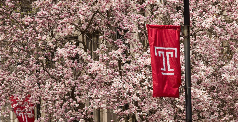Temple University Spring