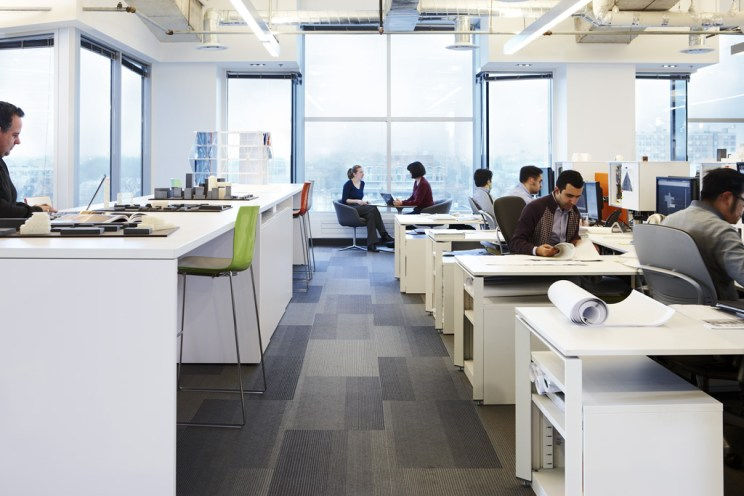 staff work in an open floor plan office with lots of windows