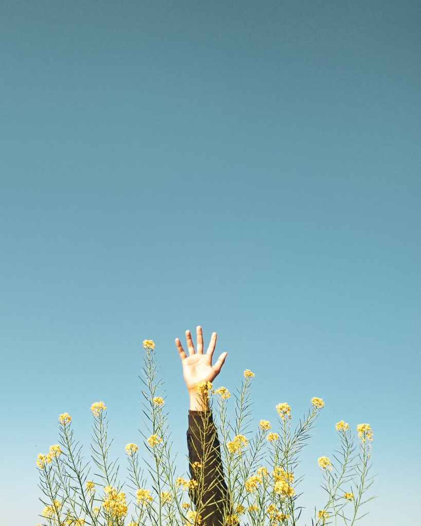 woman in black and brown long sleeve shirt raising her hands