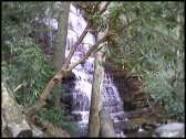 Benton Falls from the trail