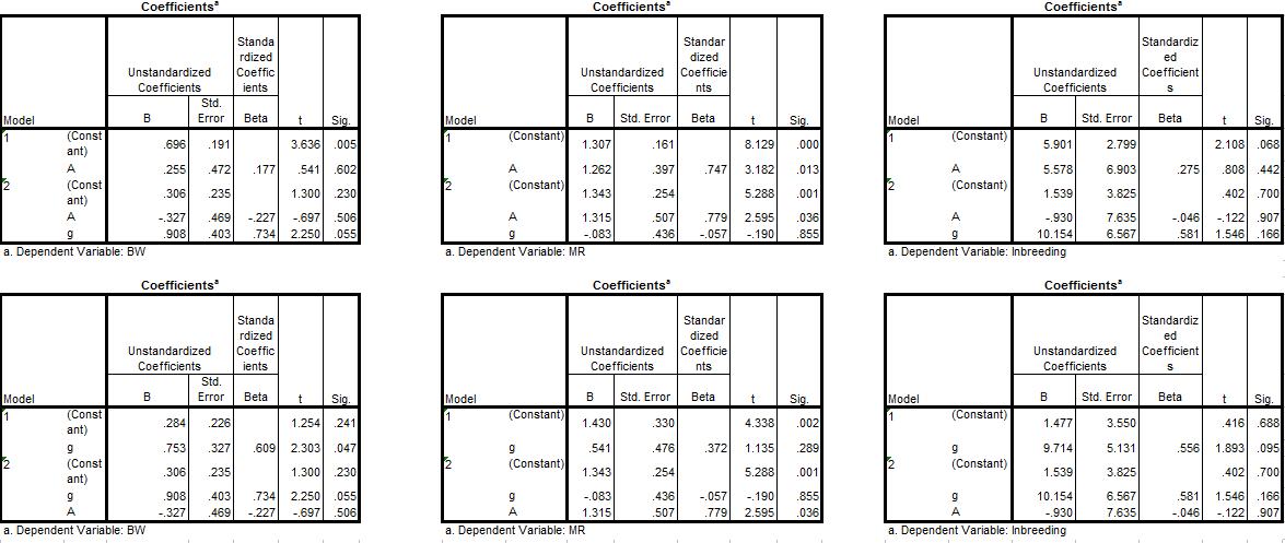 A few New Analyses