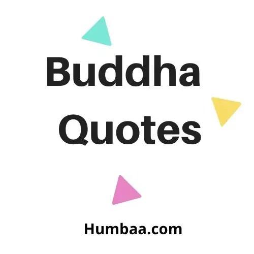 Buddha Quotes on Humbaa