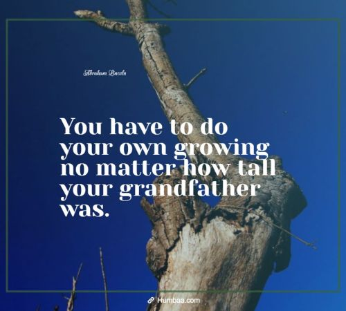 You have to do your own growing no matter how tall your grandfather was. By Abraham Lincoln on Humbaa.com