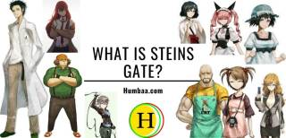 What is Steins Gate?
