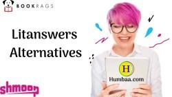 Litanswers Alternatives