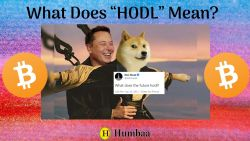 """What Does """"HODL"""" Mean?"""