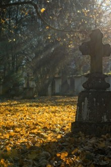OPINION: Burials are on their death bed as non-traditional alternatives blossom