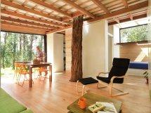 Tiny Eco-friendly House In Ecuador Retired Couple