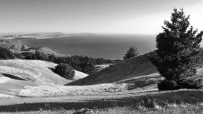 Entrance to SF Bay from Mt. Timalpais