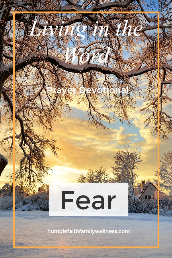 Fear, Prayer Devotional, Faith