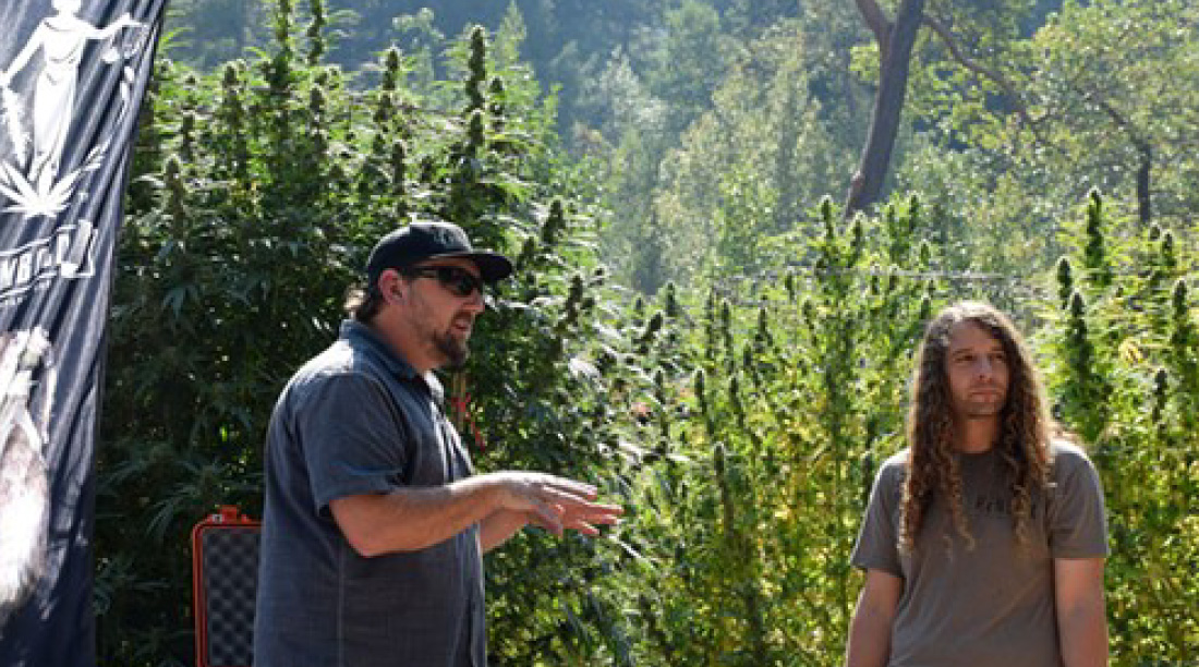 Seeds Humboldt County