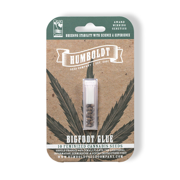 Humboldt Seed Company Feminized Bigfoot Glue Seed Pack