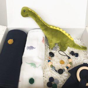 Baby surprise giftbox Dinosaur