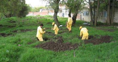 Plantación Humedal La Conejera