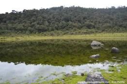 Laguna Chiquita