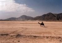 بلوچستان ،تحریر سیم زہری