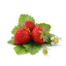 Органічне добриво для полуниці