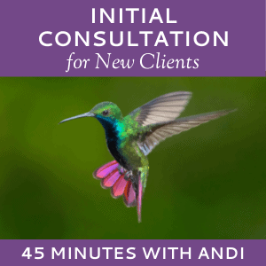 Schedule an Initial Consultation with Andi Lucas of Hummingbird Marketing Services (for New Clients)
