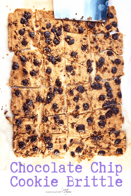 Chocolate Chip Cookie Brittle! A total taste SENSATION! #soeasy #onebowl