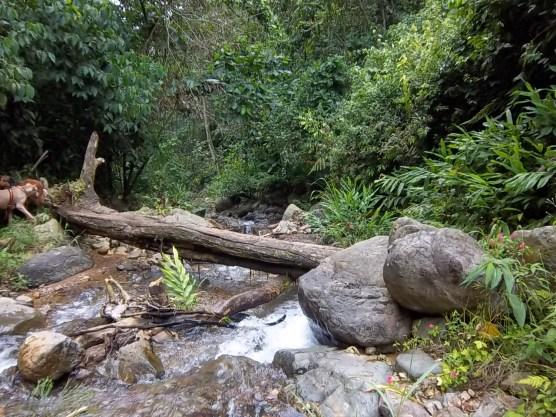 hike and panaramas 008