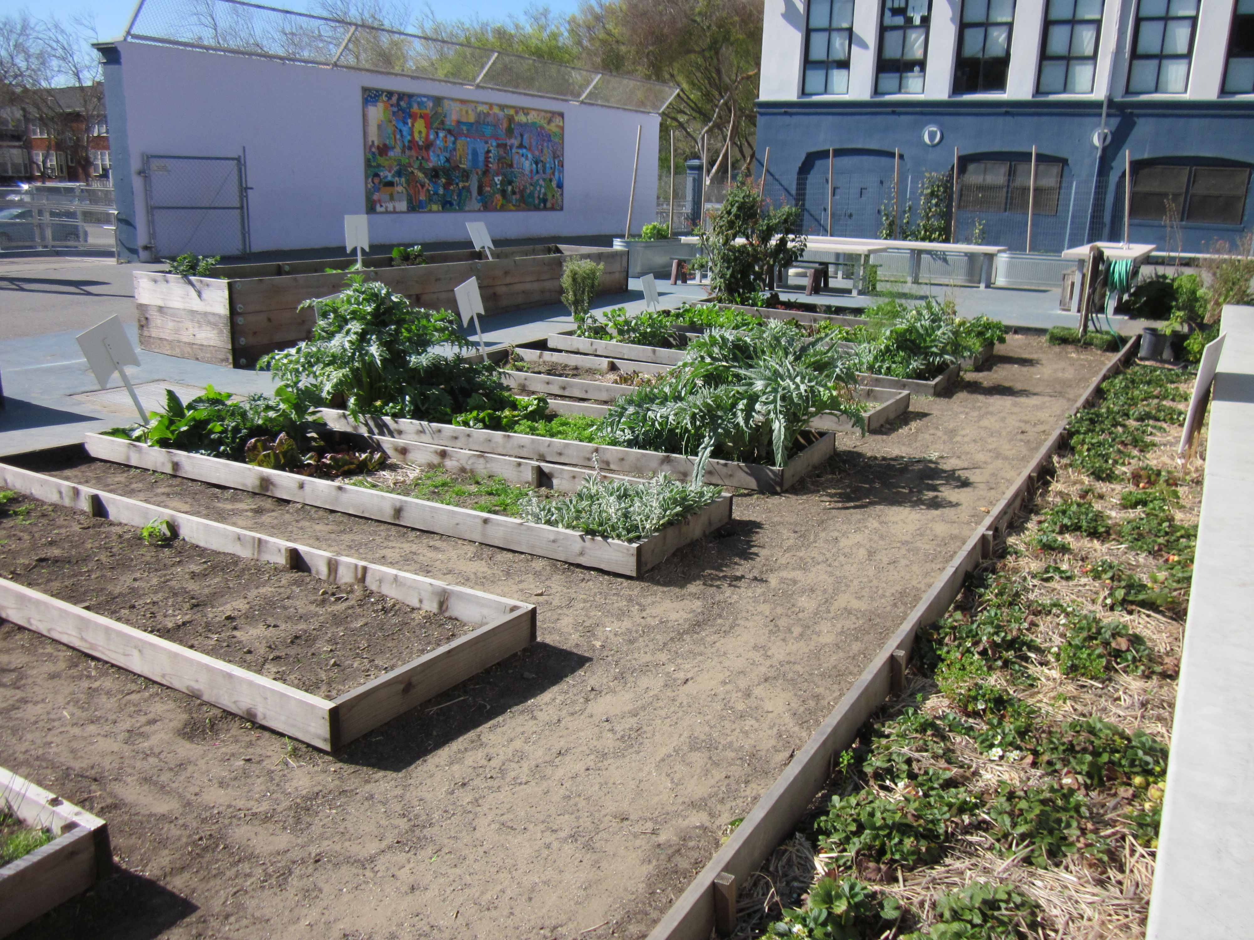 San Francisco Destinations Rosa Parks Elementary School
