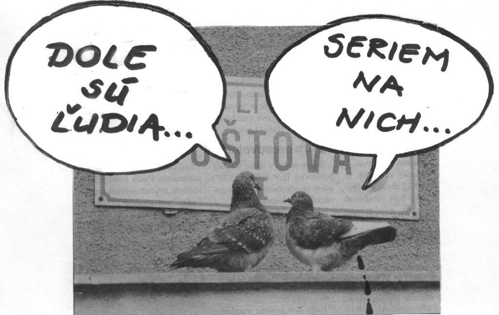 karikatúra porno veľké vtáky